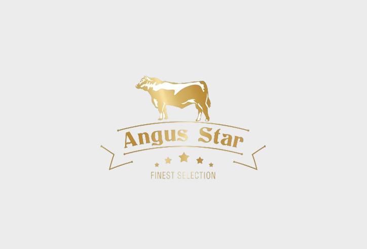 logo angus star